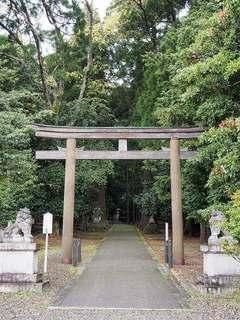 P5040121若狭彦神社鳥居.jpg