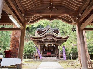 P5050211岡太神社拝殿正面.jpg