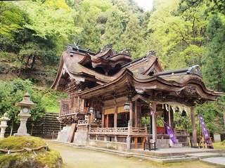 P5050215岡太神社本殿.jpg