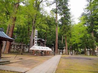 P5050217岡太神社境内.jpg