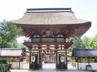 P5250082沙沙貴神社神門.jpg