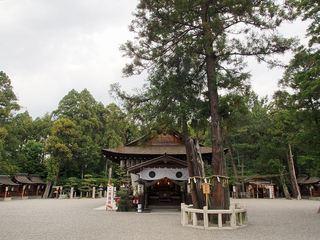 P5250154建部大社拝殿.jpg