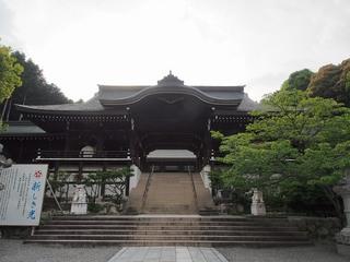 P5250164近江神宮外拝殿.jpg
