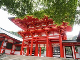 P5250166近江神宮.jpg