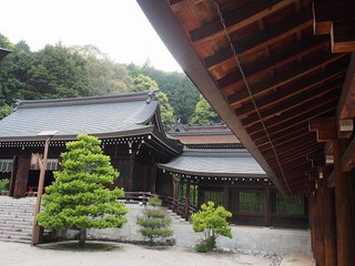 P5250172近江神宮本殿を臨む.jpg