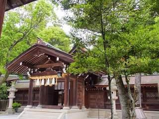 P6010211伊弉諾神宮本殿.jpg