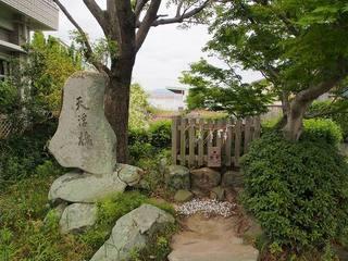 P6010324天の浮橋.jpg